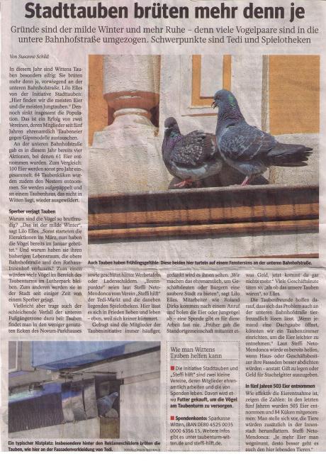 Artikel WAZ über Stadttauben Witten