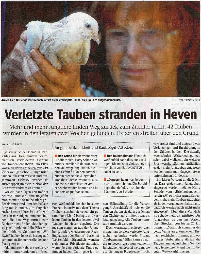 Zeitungsartikel WAZ August 2013