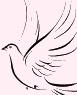 logo_verein_right_frei.png