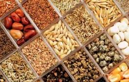 Bio-Lebensmittel und Öko-Landbau