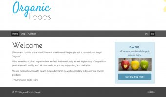 Online Shop - Vorlage