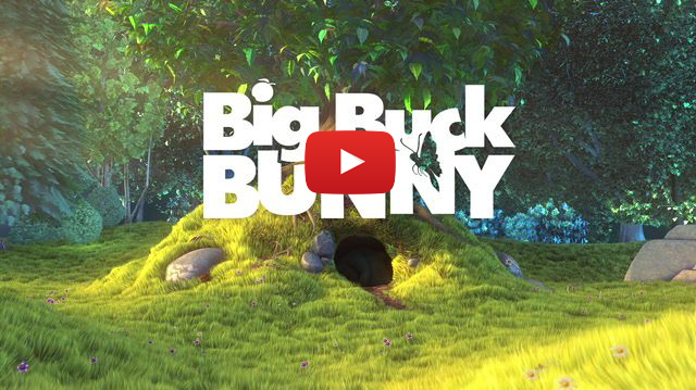bigBuckVideo.jpg