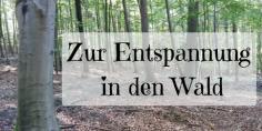 Zur-Entspannung-in-den-Wald.png