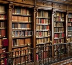 Biblioteca_libros_2.jpg