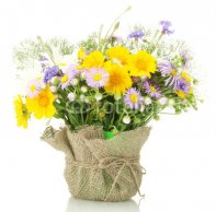 beautiful_bouquet_of_bright__wildflowers_in_flowerpot_isolated.jpg