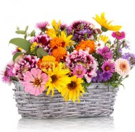 beautiful_bouquet_of_bright_flowers_in_basket_isolated_on_white.jpg