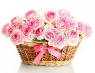 beautiful_bouquet_of_pink_roses_in_basket_isolated_on_white.jpg