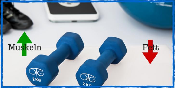 Fettverbrennung schnell Abnehmen durch Muskelaufbau Krafttraining