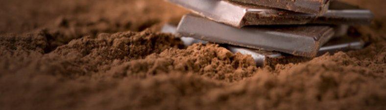 Bioschokolade und warum wir auf Bio bei Schokolade setzen sollten