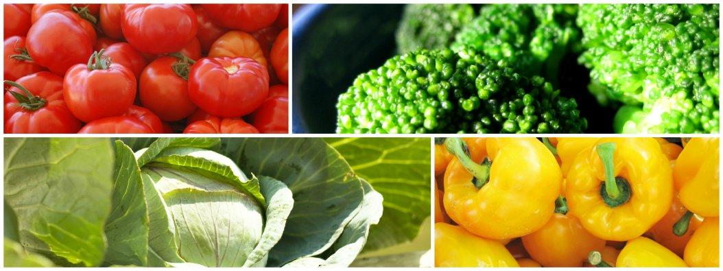 Früchte, Äpfel, Birnen, Trauben, exotische Früchte,