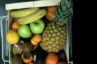 Früchte Sigrist Kleindietwil, Früchteservice und Früchte Lieferungen
