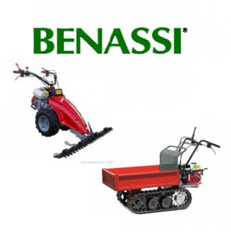 Benassi.png