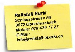 Reitstall Bürki - Ihr Reitstall für Beritt und Pferdepension in Oberdiessbach (BE)