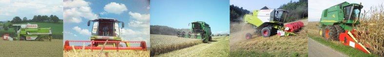 Bolzli Transport AG - Lohnarbeiten - Maisdreschen