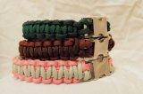 Individuell gefertigte Hundehalsbänder aus Paracord finden Sie unter http://Paracord24.com