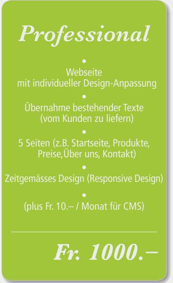 Professional Webdesign Angebot