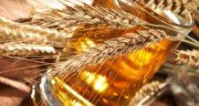 Gluten-Fallen-Bier-Gerste750x400.jpg