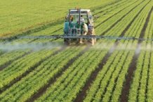 Monokultur-Traktor-im-Feld300x200.jpg