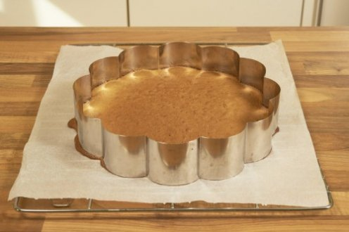 biskuitboden-gebacken-500x333.jpg