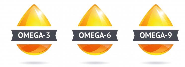 omega-oele-grafik-3-6-9_.jpg