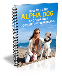 How-to-be-the-alpha-dog-and-stop-your-dogs-behavior-problems-L.png