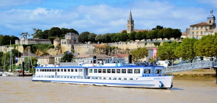Cycling cruises inside the heart of the Bordeaux wine region