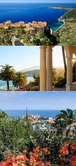 The Gardens Of The Cote D'Azur