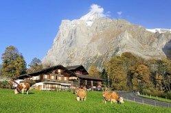 Interlaken Grindelwald