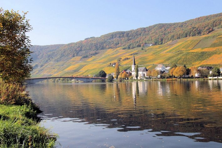 Moselle River Cruise with E-Bike Tours