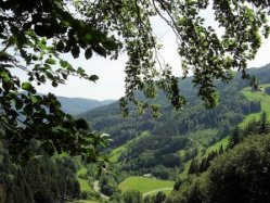 Southern Black Forest area