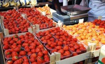 Markt Gent Belgien