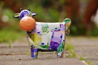cow-1357210_1920.jpg