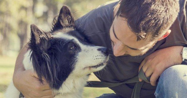 5_Ways_Improve_Health_Of_Animals.jpeg