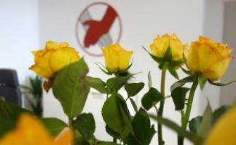 Blumen am Empfang Physiotherapeut Dortmund