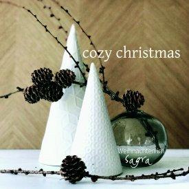 Cozy-christmas-Flyer-18.jpg
