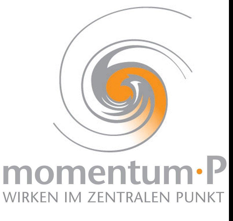 momentum_logo_name_spirale-Kopie.jpg