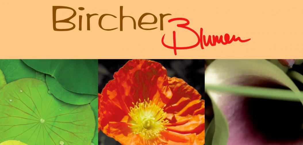 Bircher Blumenladen Dürnten