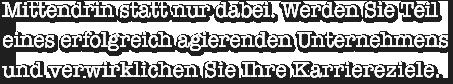 karriere-stellenangebote-de.png