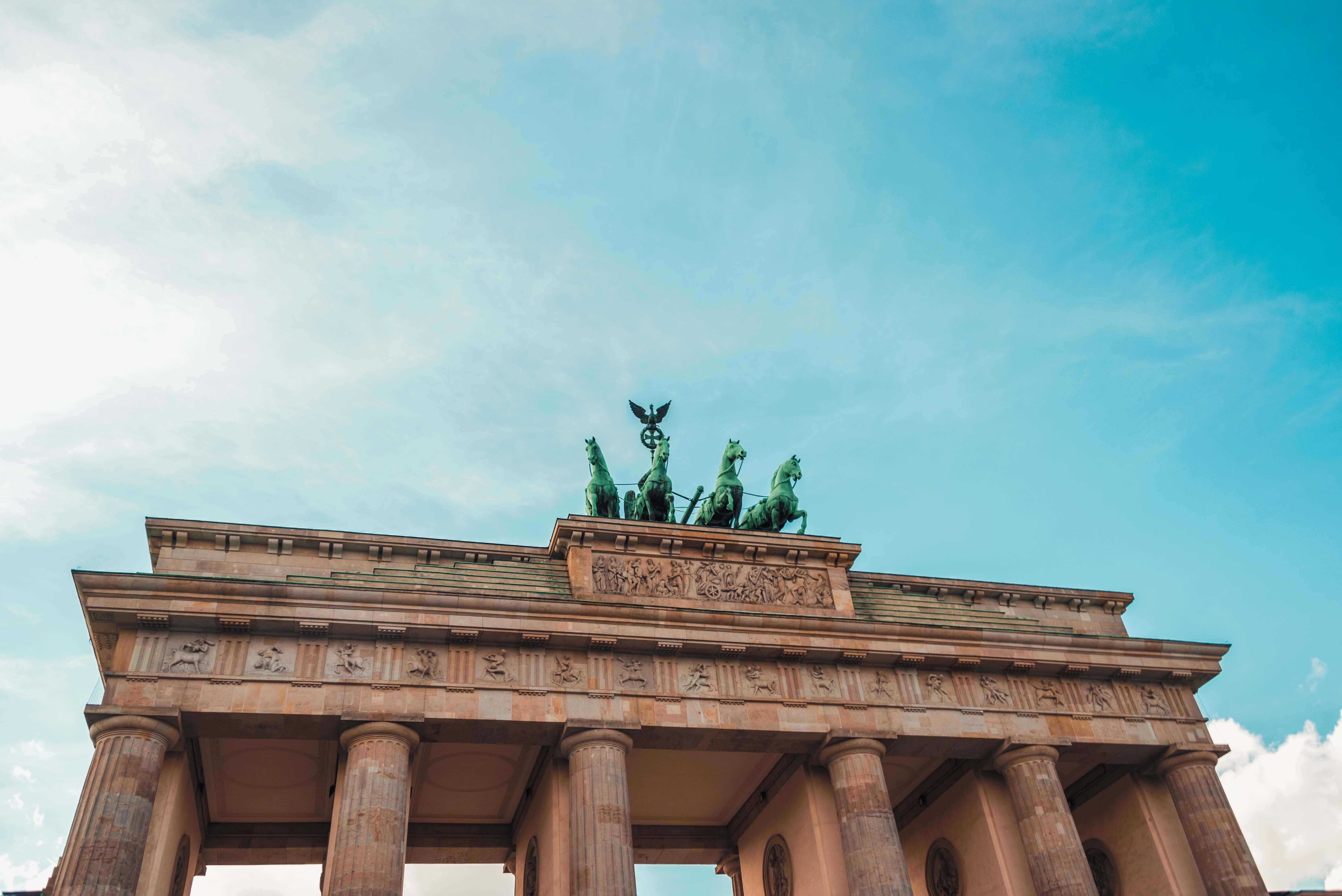 Berliner Schimmelbeseitigung