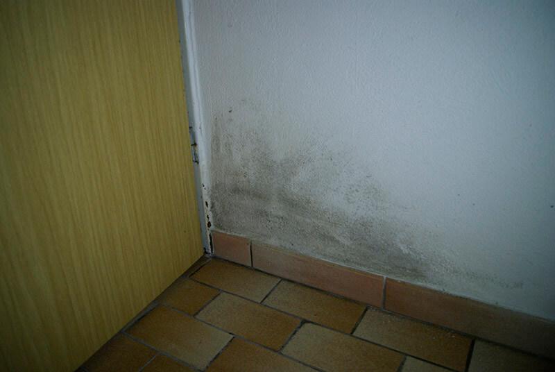 Schimmel am Eingang einer Wohnung