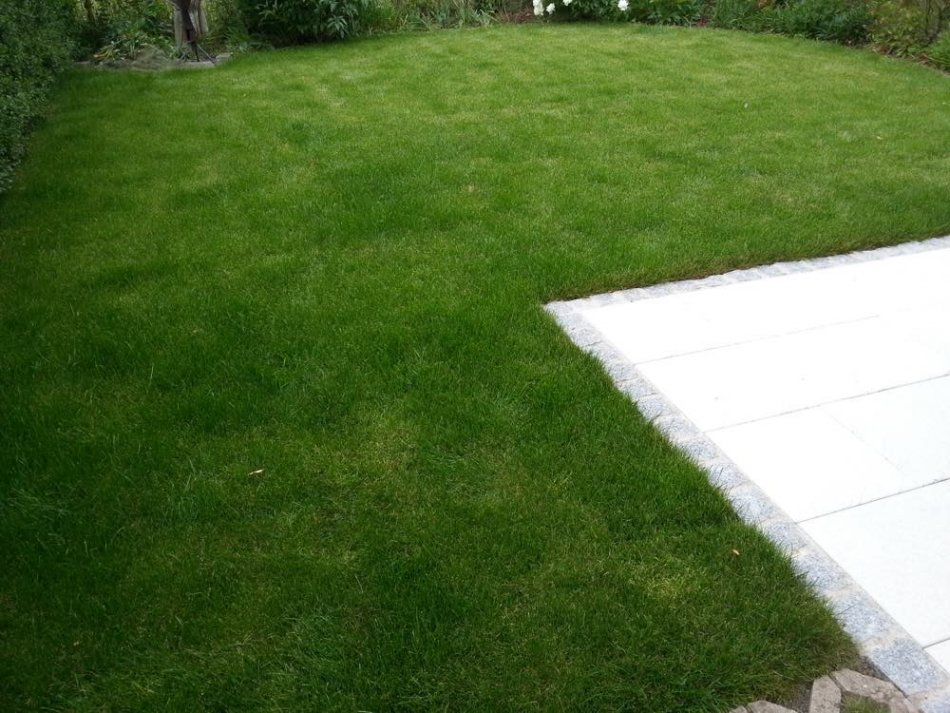Gartenbau Stuttgart rollrasen stuttgart 15 jahre gartenbau erfahrung