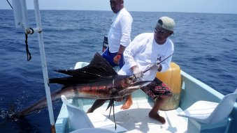 Sport fishing huatulco