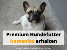 Hundefutter-kostenlos-erhalten.png