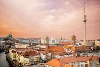 berlin_skyline_schaedlingsbekaempfung_berlin.jpg
