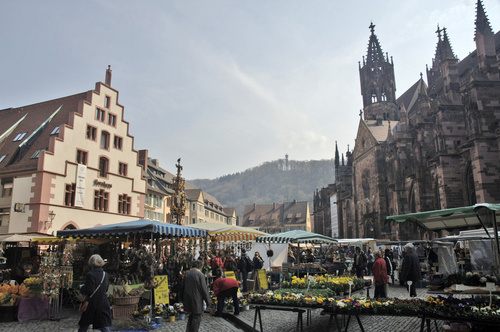 Freiburg im Breisgau Sanitär Notdienst