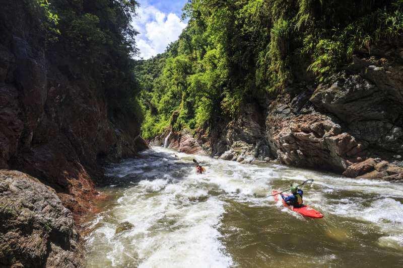 Gnaria Ecuador