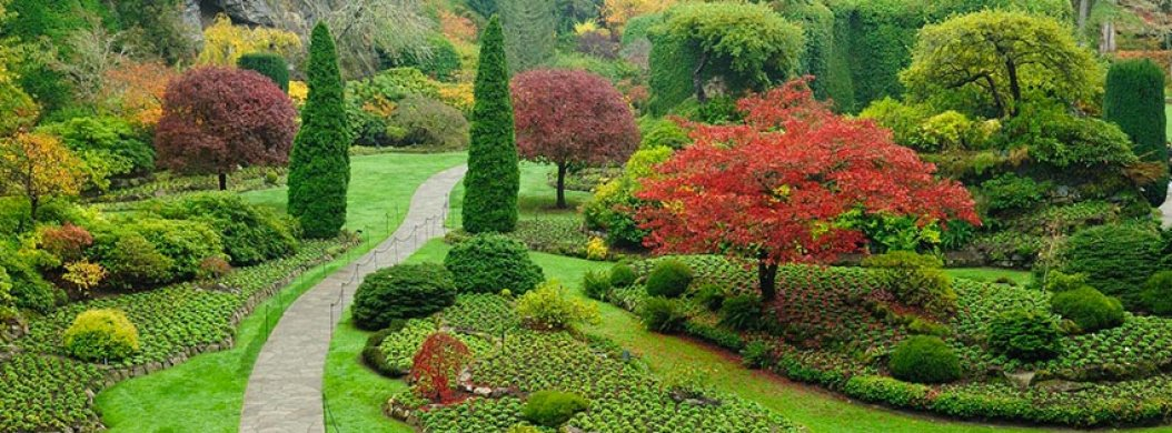 specializing in quality landscape design mystic mountain landscapes