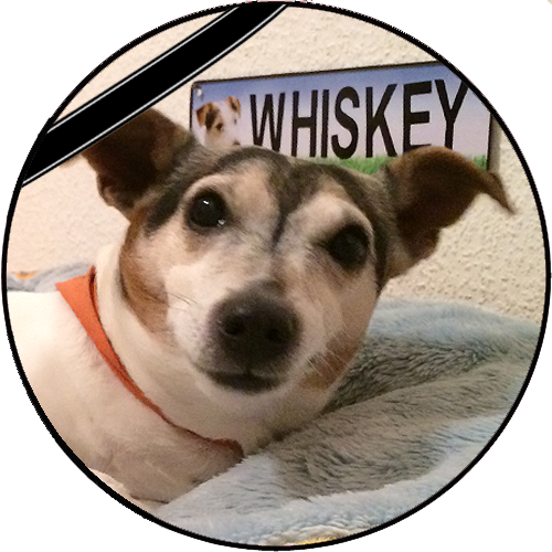 Whiskey-trauer.png