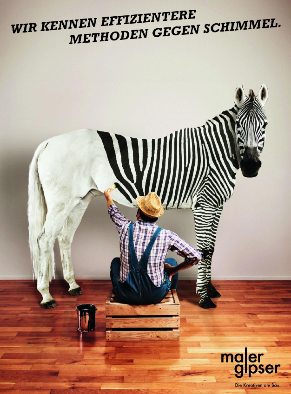 schimmel-zebra.png