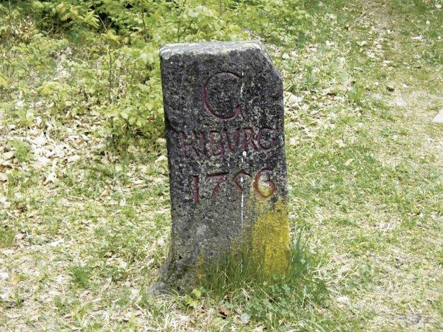 Tafel9_Kyburgerstein.jpg